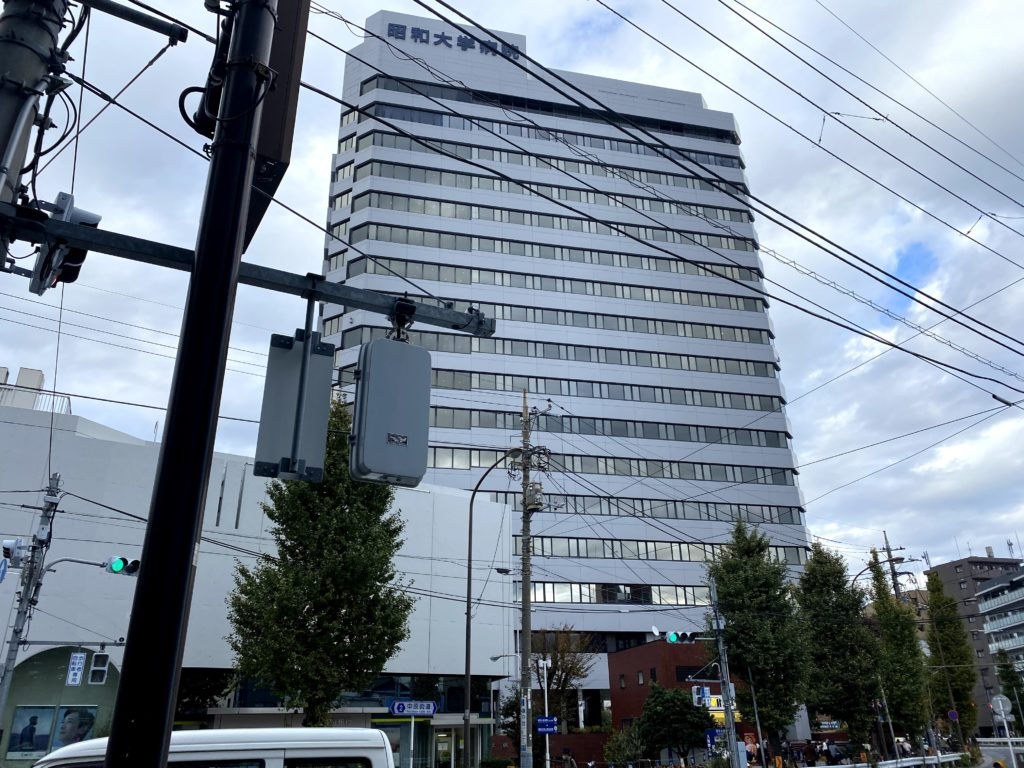 hatanodai-higashiguchi-shopping-street-showa-u
