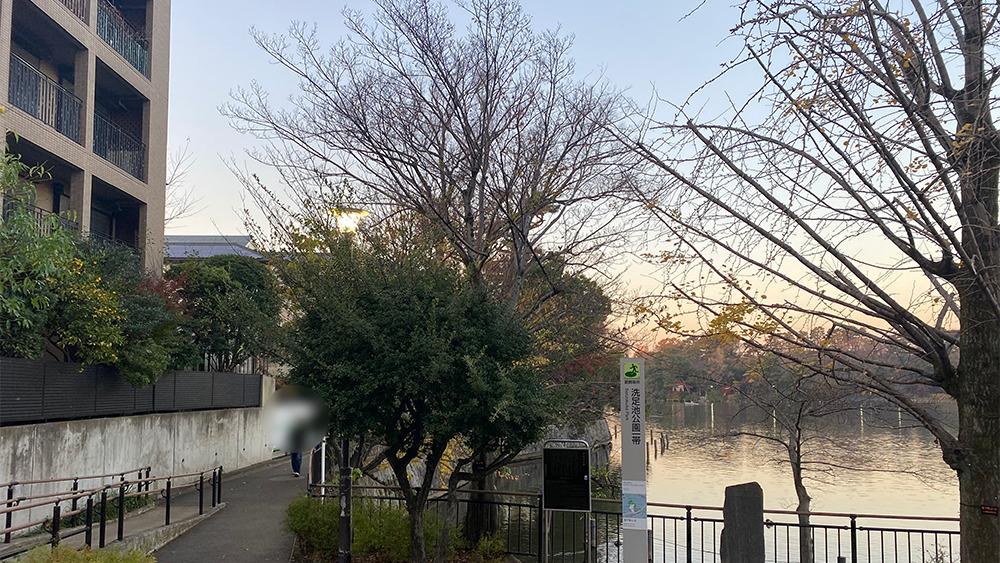 洗足池沿いの通り